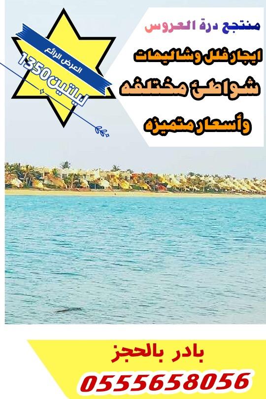 درة العروس ايجارفلل بشواطئ مختلفه
